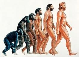 Al-Quran membantah teori evolusi