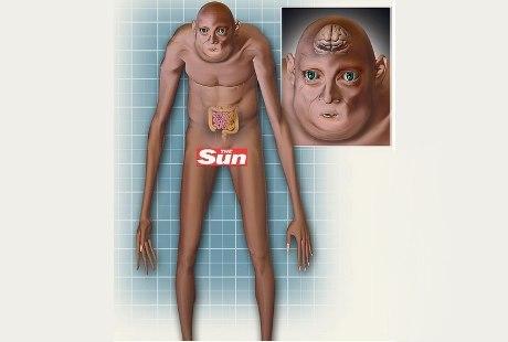 Beginilah Wujud Bentuk Tubuh Manusia 1000 Tahun Mendatang [ www.Up2Det.com ]
